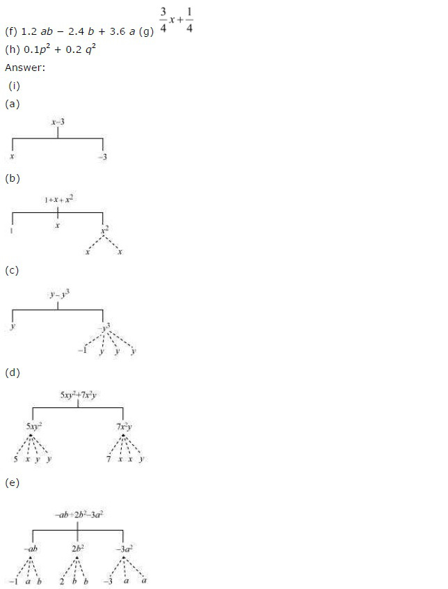 NCERT Solutions for Class 7th Maths Chapter 12 – Algebraic Expressions 1